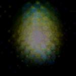 IMG_0807