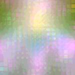 IMG_0929