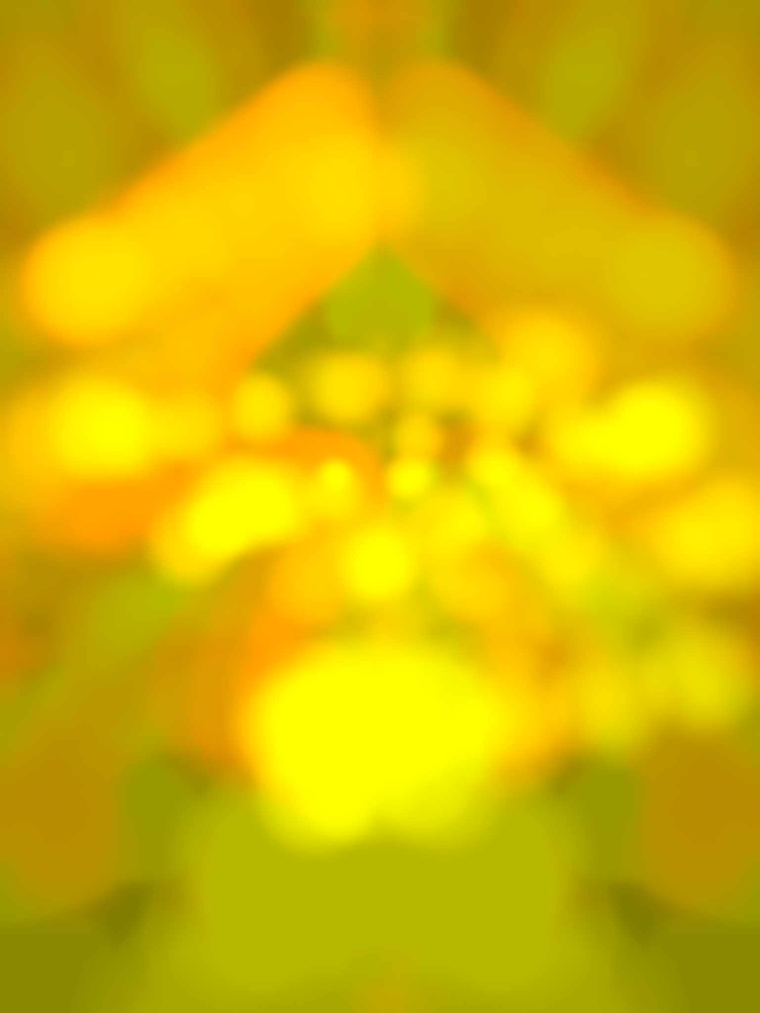 iOS Simulator Screen shot Jun 20, 2012 9.14.02 AM